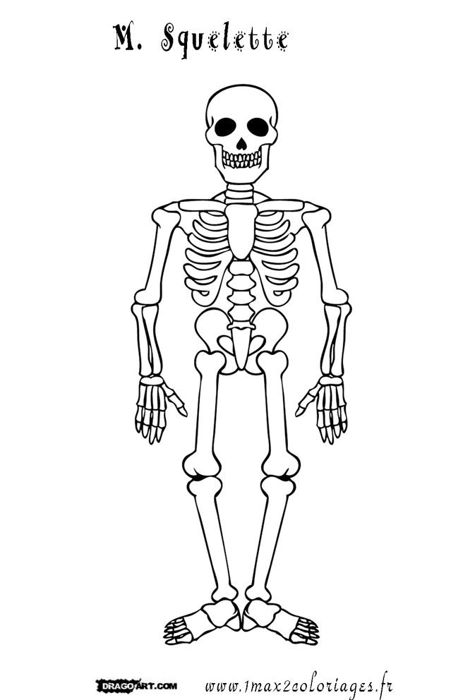 coloriage m squelette - Squelette Halloween