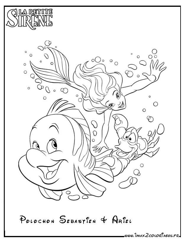 Coloriages La Petite Sirene Polochon Sebastien Et Ariel
