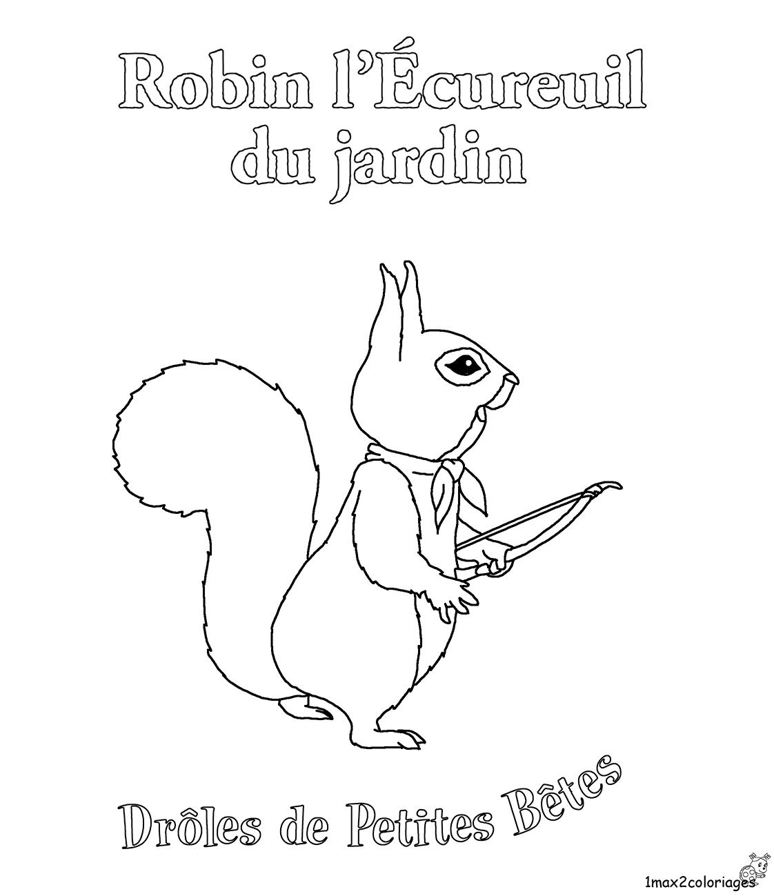 Coloriages des dr les de petites b tes robin l 39 cureuil du jardin - Coloriage petit ecureuil ...