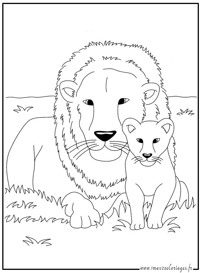 Coloriages animaux du monde le lion et son lionceau - Coloriages lion ...