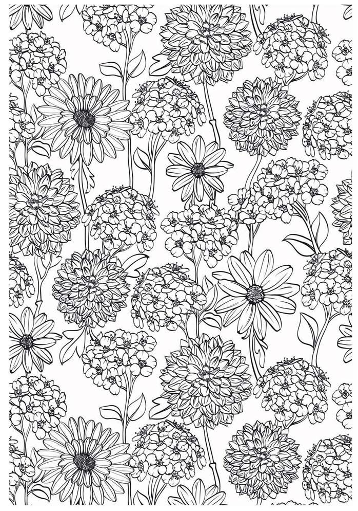 coloriage pour adulte anti stress fleurs des champs a imprimer. Black Bedroom Furniture Sets. Home Design Ideas