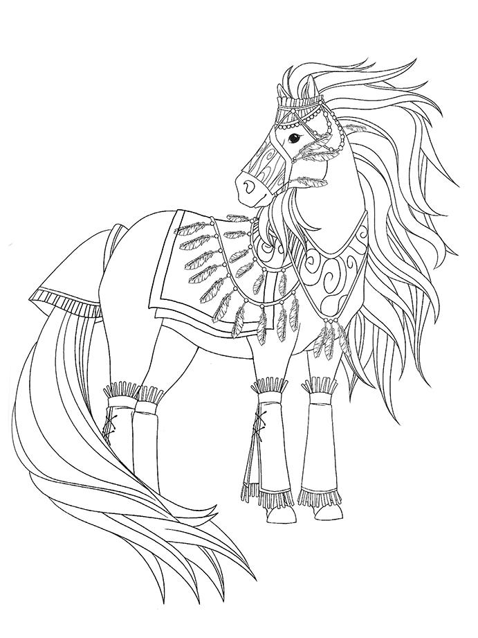 Coloriage magnifique cheval indien d 39 am rique a imprimer - Chevaux a colorier et a imprimer ...