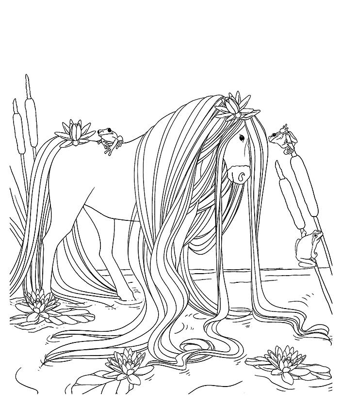 Coloriage rainettes autour d 39 un cheval magique - Coloriage chevaux ...