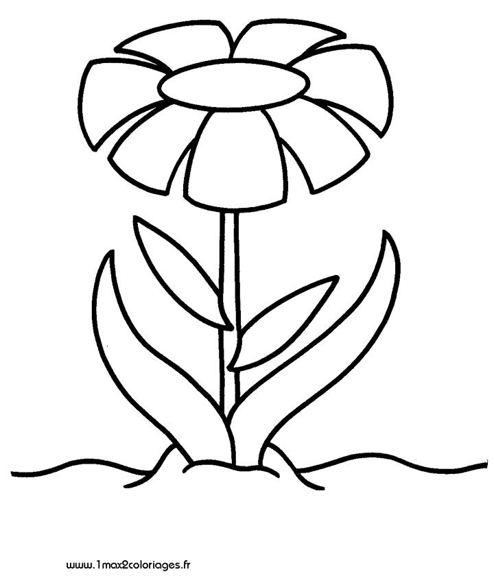 Coloriages pour les 3 4 ans jolie fleur a imprimer - Coloriage fleur 3 ans ...