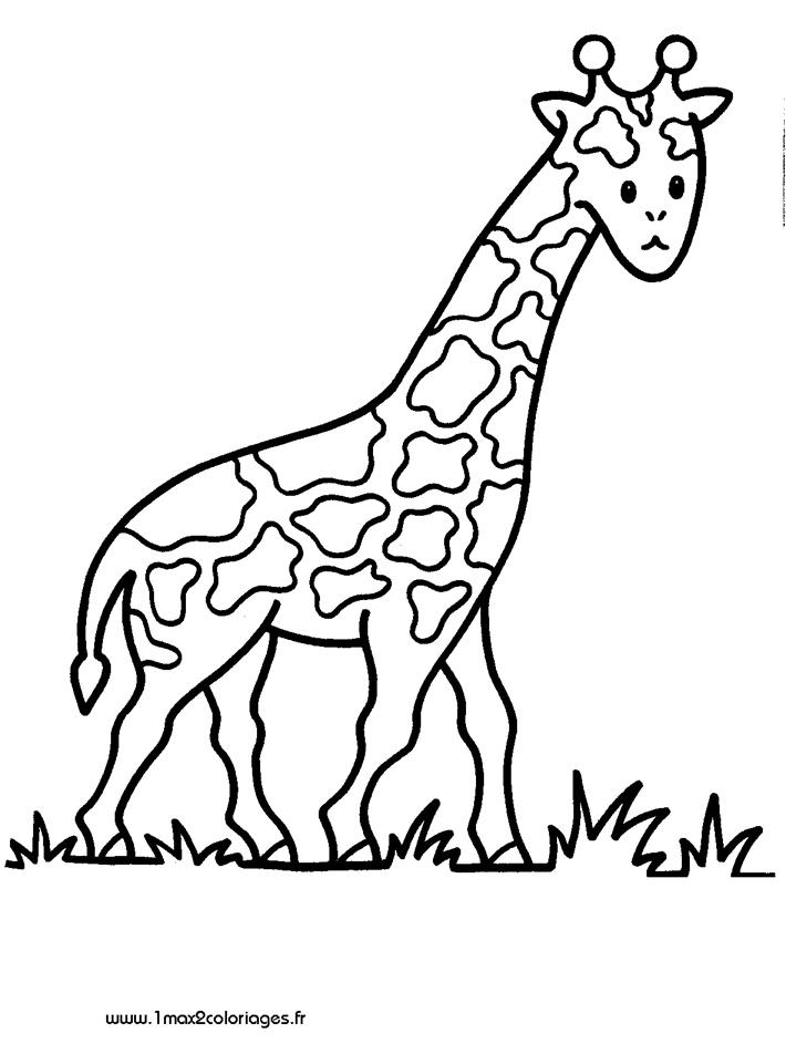 Coloriages pour les 3 4 ans girafe a imprimer - Coloriage pour 2 ans ...