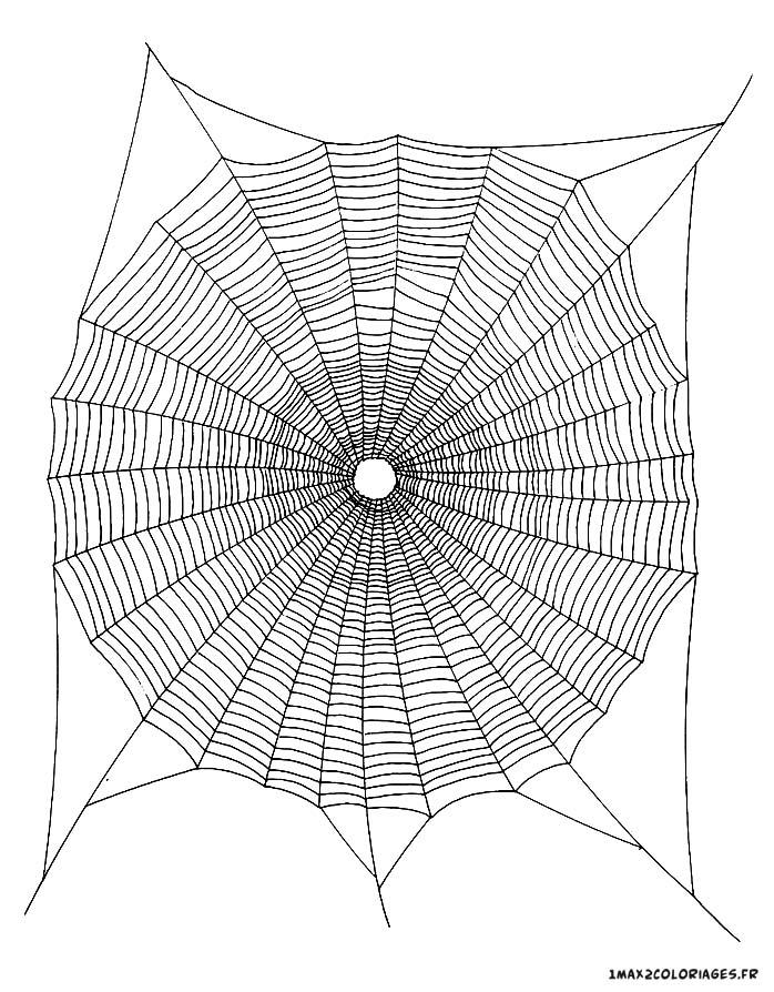 Coloriage de mandalas mandala en toile d 39 araign e a imprimer - Toile d araignee en papier ...