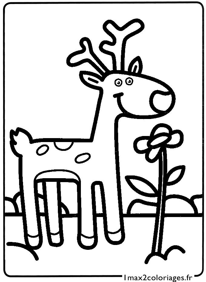 Mes premiers coloriages le petit cerf a imprimer - Mes coloriages a imprimer ...