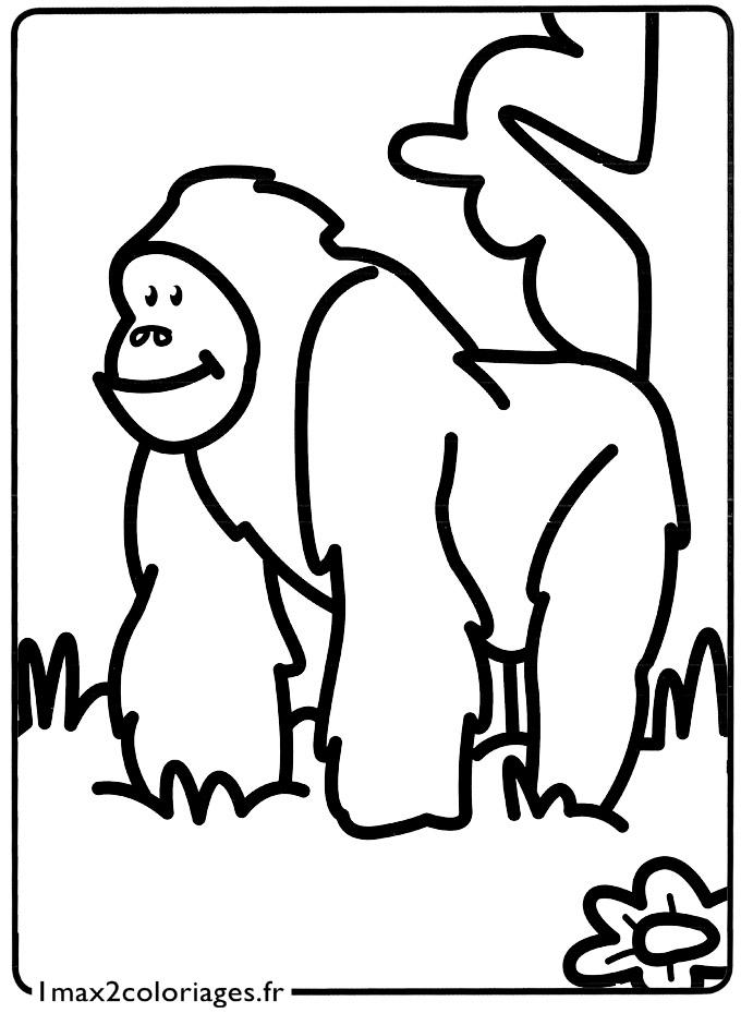 Mes premiers coloriages un orang outan a imprimer - Mes coloriages a imprimer ...
