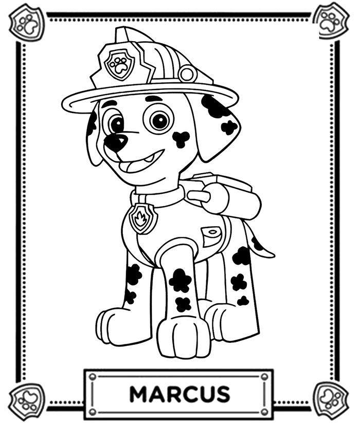 coloriage de marcus le dalmatien de pat u0026 39 patrouille