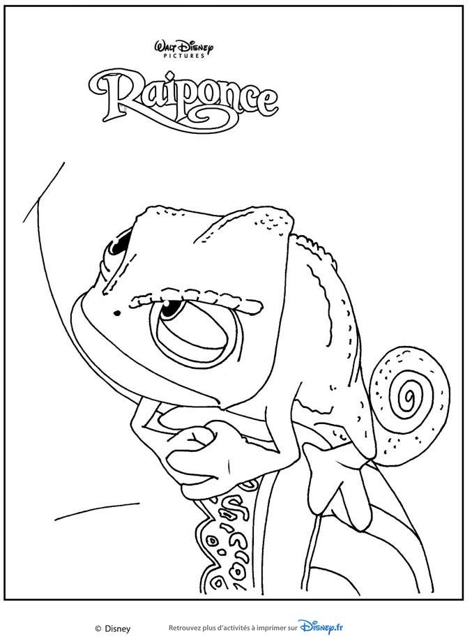 raiponce-pascal-cameleon
